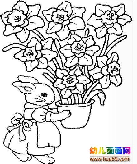 小兔子   简笔画   卡通兔   子   1,画画网   妈妈简笔画