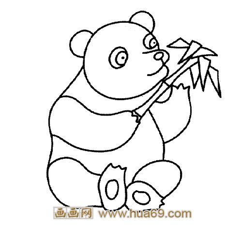 吃竹子的大熊猫简笔画2