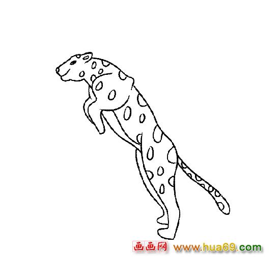 动物运动会简笔画大全_动物运动会简笔画图片