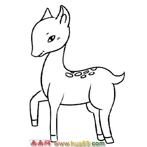 行走的小梅花鹿动物简笔画
