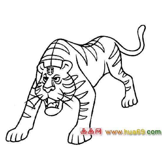 老虎卡通图片简笔画图片