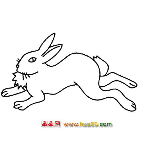 奔跑的小兔子简笔画1,画画网