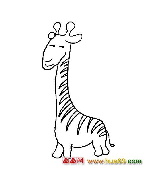 可爱的长颈鹿【简笔画】1
