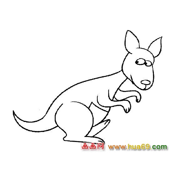 袋鼠【动物简笔画】5,画画网
