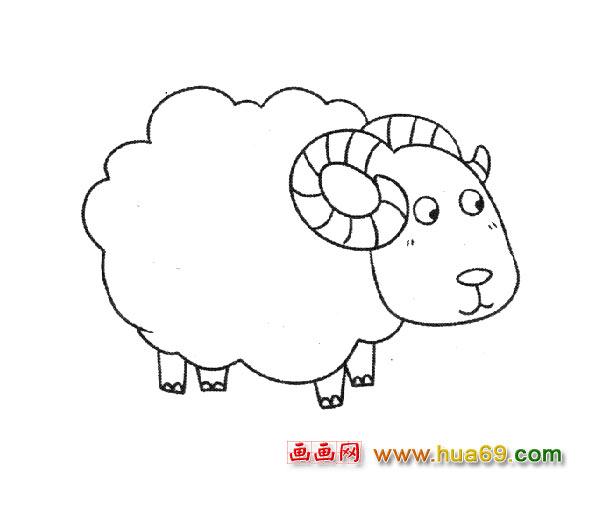 小绵羊简笔画_动物简笔画
