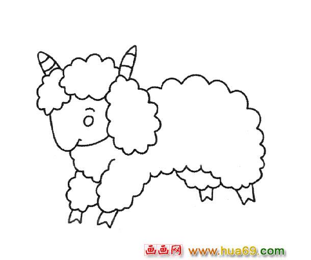 可爱的小绵羊_动物简笔画