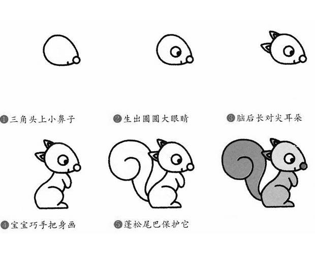 幼儿简笔画:小松鼠简笔画的画法