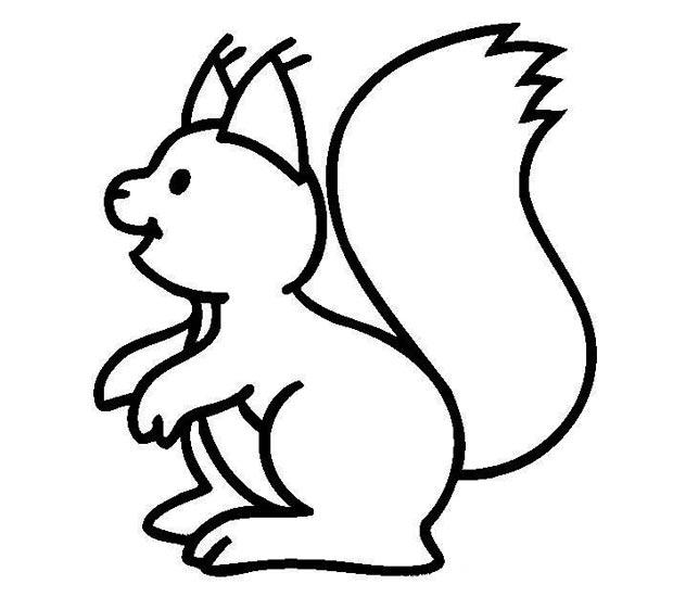 幼儿简笔画:一只可爱的大松鼠