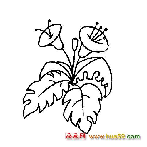 素描各种花的简笔画下载,关于花的简笔画,儿童画冬天的简笔画