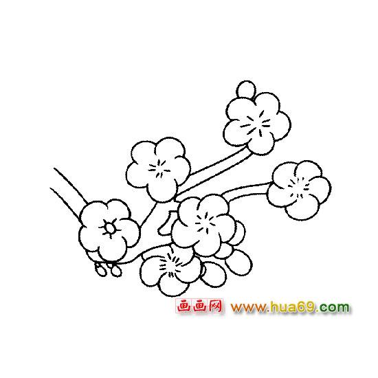 漂亮的梅花简笔画