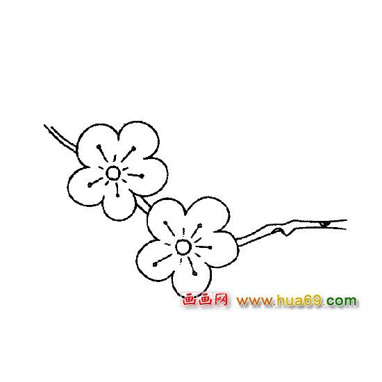 花卉简笔画 漂亮的梅花2 简笔画网
