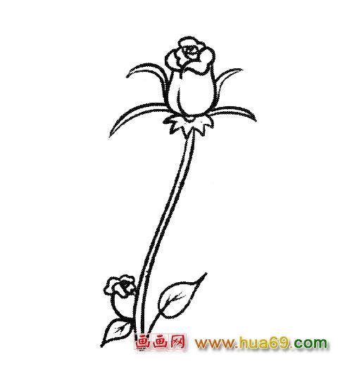 花卉简笔画 一束玫瑰1