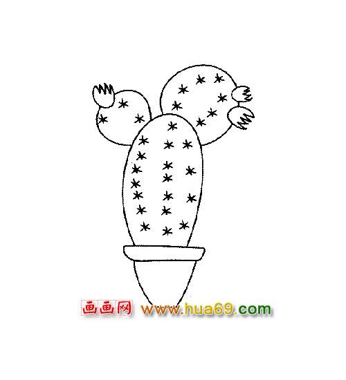 开花的仙人掌│植物简笔画2