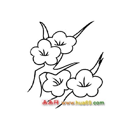 四朵梅花简笔画,画画网