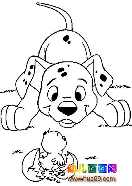 小花狗和刚出生的小鸡简笔画