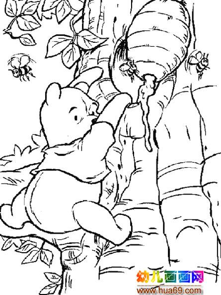 小熊卡通简笔画高清 小厨师卡通简笔画 可爱小熊头像简笔画