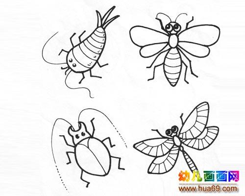各种小昆虫简笔画