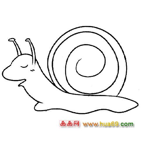 简笔画:睡觉的小蜗牛2