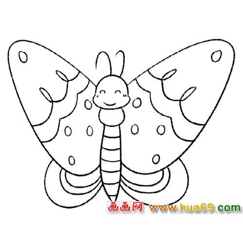 昆虫简笔画:斑蝶5,画画网