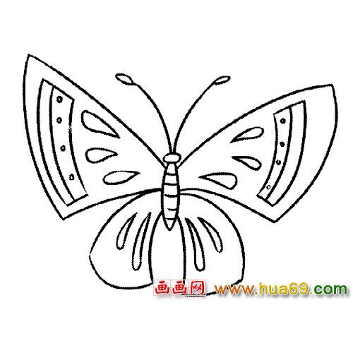 昆虫简笔画 玉蝴蝶2