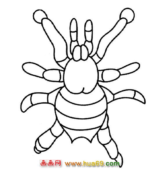 蜘蛛简笔画 红蜘蛛简笔画 红蜘蛛简笔画过程 卡通蜘蛛图片