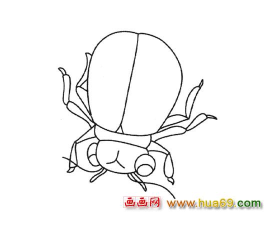 简笔画:卡通甲虫 下一个图片