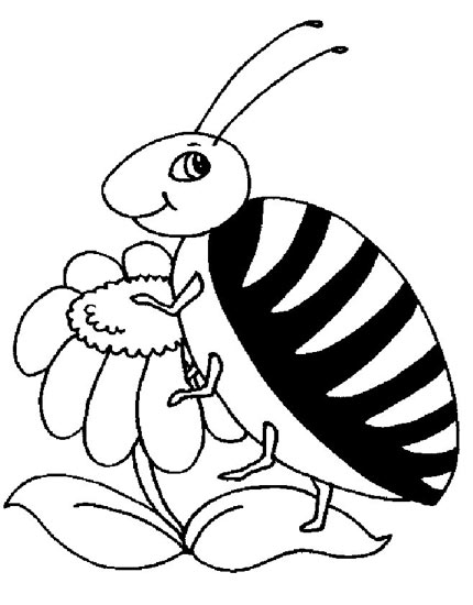 一只胖昆虫_怎样画昆虫简笔画图片