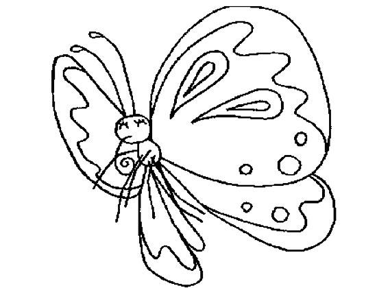 漂亮的花蝴蝶_怎样画昆虫简笔画3