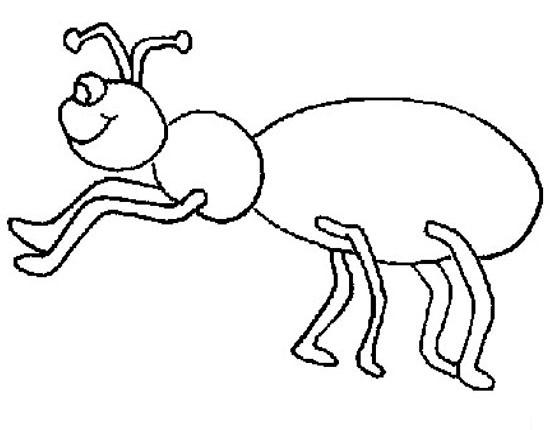 一只大肚子的蚂蚁 怎样画昆虫简笔画