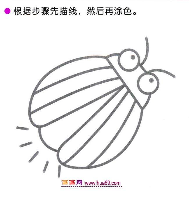 幼儿简笔画:四步画可爱萤火虫图解教程