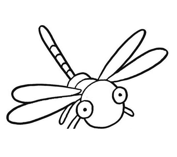 幼儿简笔画:蜻蜓的画法图解3