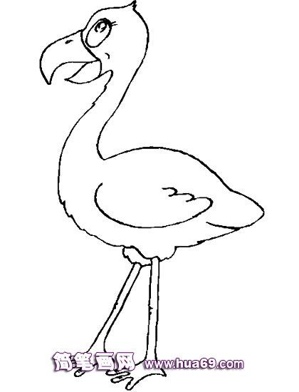 鸟类简笔画 小鸟