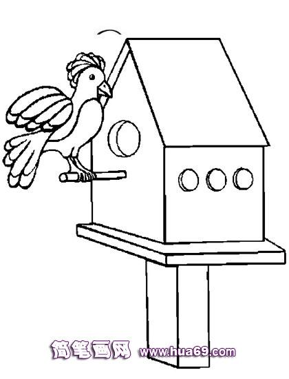 小鸟和房子简笔画,画画网