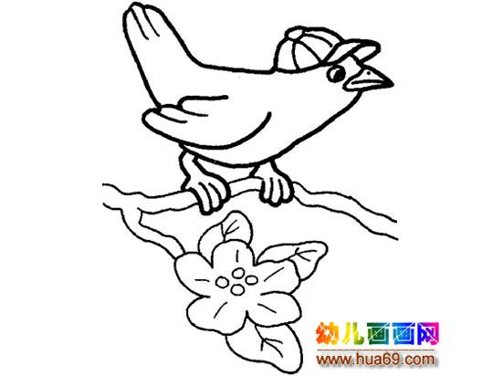 简笔画:一只戴帽子的小鸟