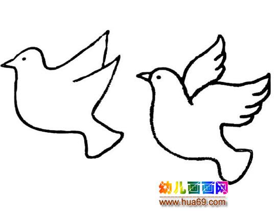 简笔画:两只和平鸽3,画画网