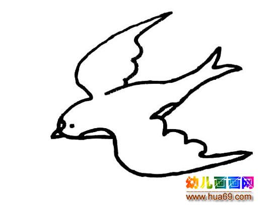飞翔的鸽子简笔画
