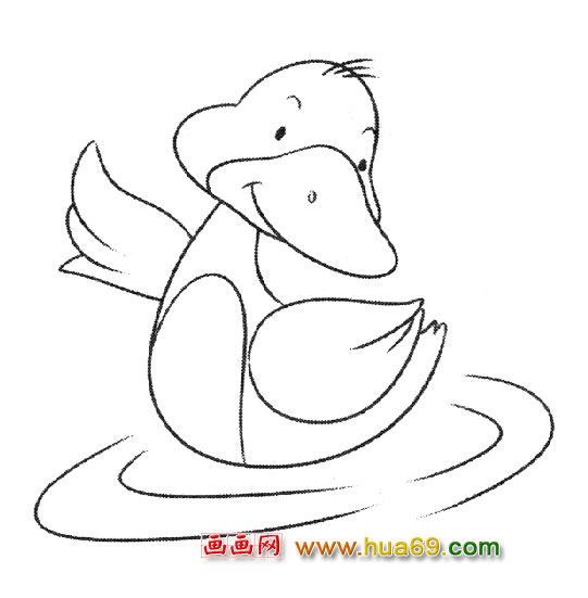 水中游泳的小鸭子简笔画3
