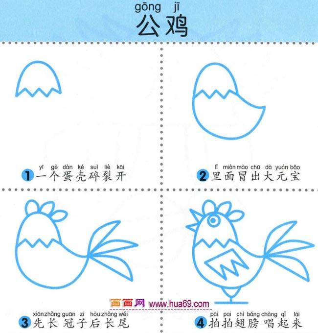 幼儿简笔画:四步画公鸡的图解教程