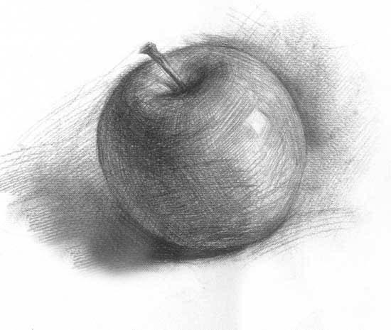 素描苹果的两种画法 苹果明暗画法    步骤:(1)确定苹果高、宽比例。    (2)画出苹果动势、朝向,根据结构画出大体明暗。    (3)深入刻画,衔接中间调子,加强体感、质感,对蒂与柄的刻画要注意整体感。   步骤要点:苹果造型与朝向是画面生动性的重要体现。苹果色素的表达要与整体结构体积相协调,蒂与   柄等局部刻画也要注意整体感。   苹果结构画法   要点:苹果造型可用球体概括,苹果形体的不规则增加了表面的生动性,要注意区别。苹果结构线刻画   要准确,苹果的蒂是重要特征,应加以表现。结构线要有