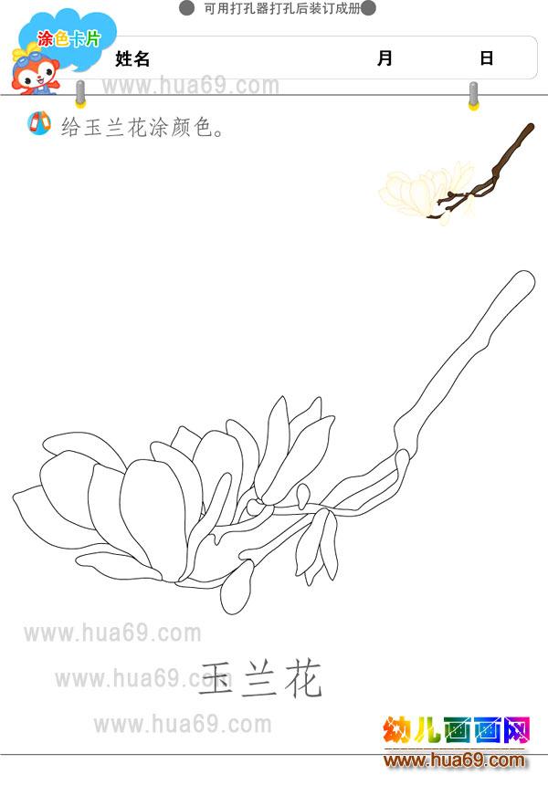 幼儿画画涂色卡:玉兰花│可打印涂色卡