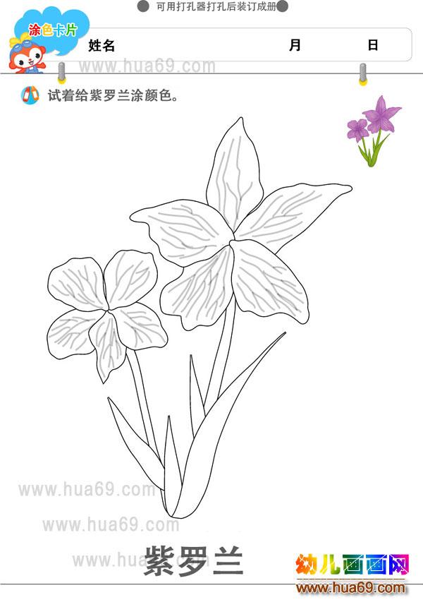 幼儿画画涂色卡:紫罗兰花│可打印涂色卡