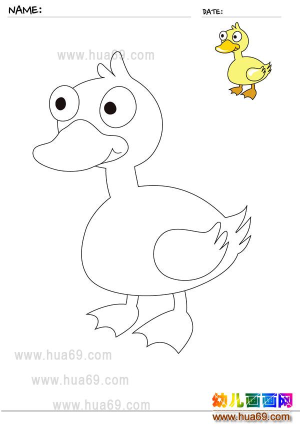 幼儿画画涂色卡:小鸭子│可打印涂色卡