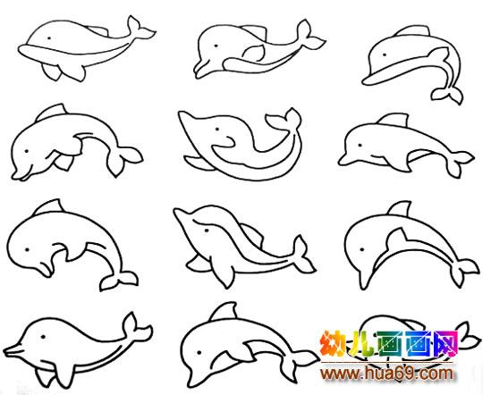 各种形状的小海豚的简笔画3