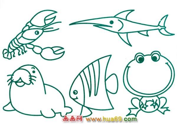 水生动物简笔画:小虾米4