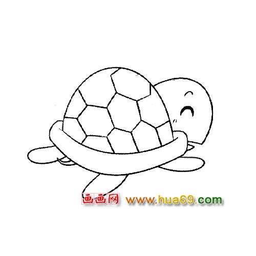 乌龟简笔画:乌龟宝宝3