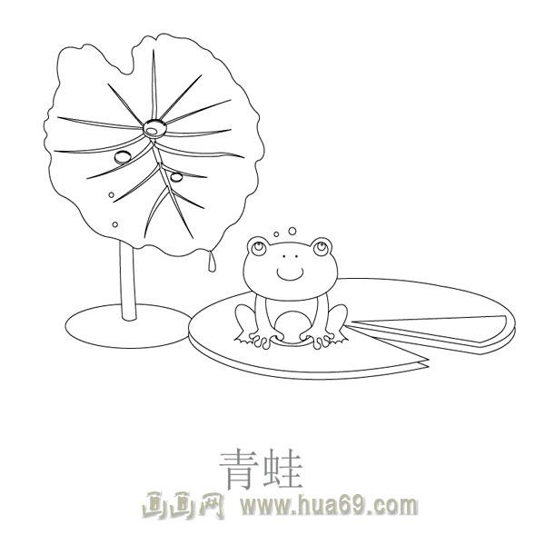 小青蛙荷叶伞简笔画展示