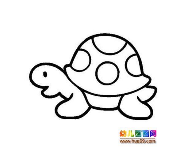 可爱的小乌龟_水生动物简笔画