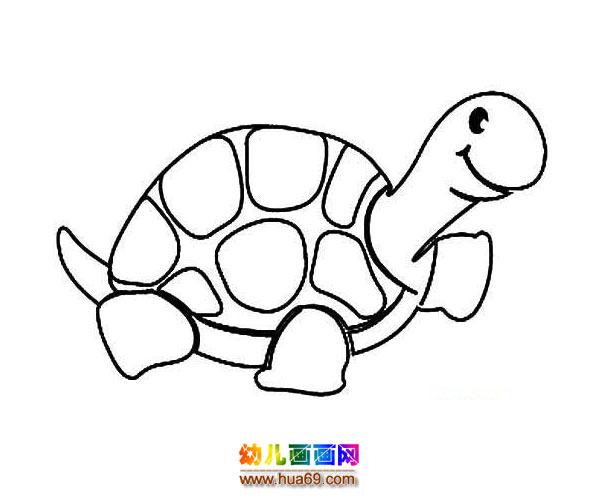 可爱的小乌龟_水生动物简笔画2