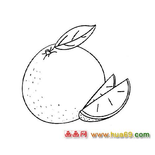 水果简笔画:柑橘,画画网