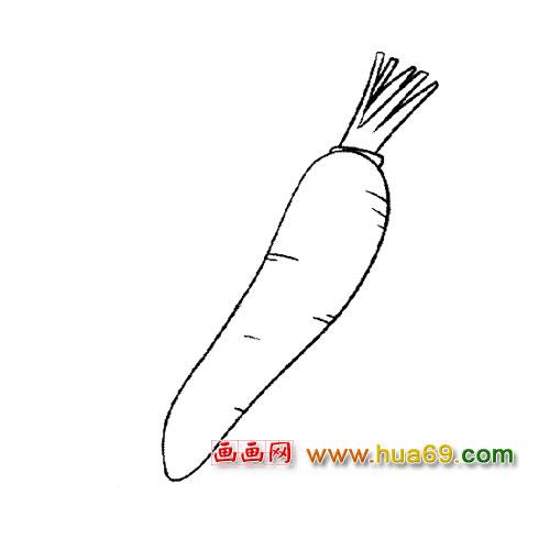 细长的萝卜简笔画1